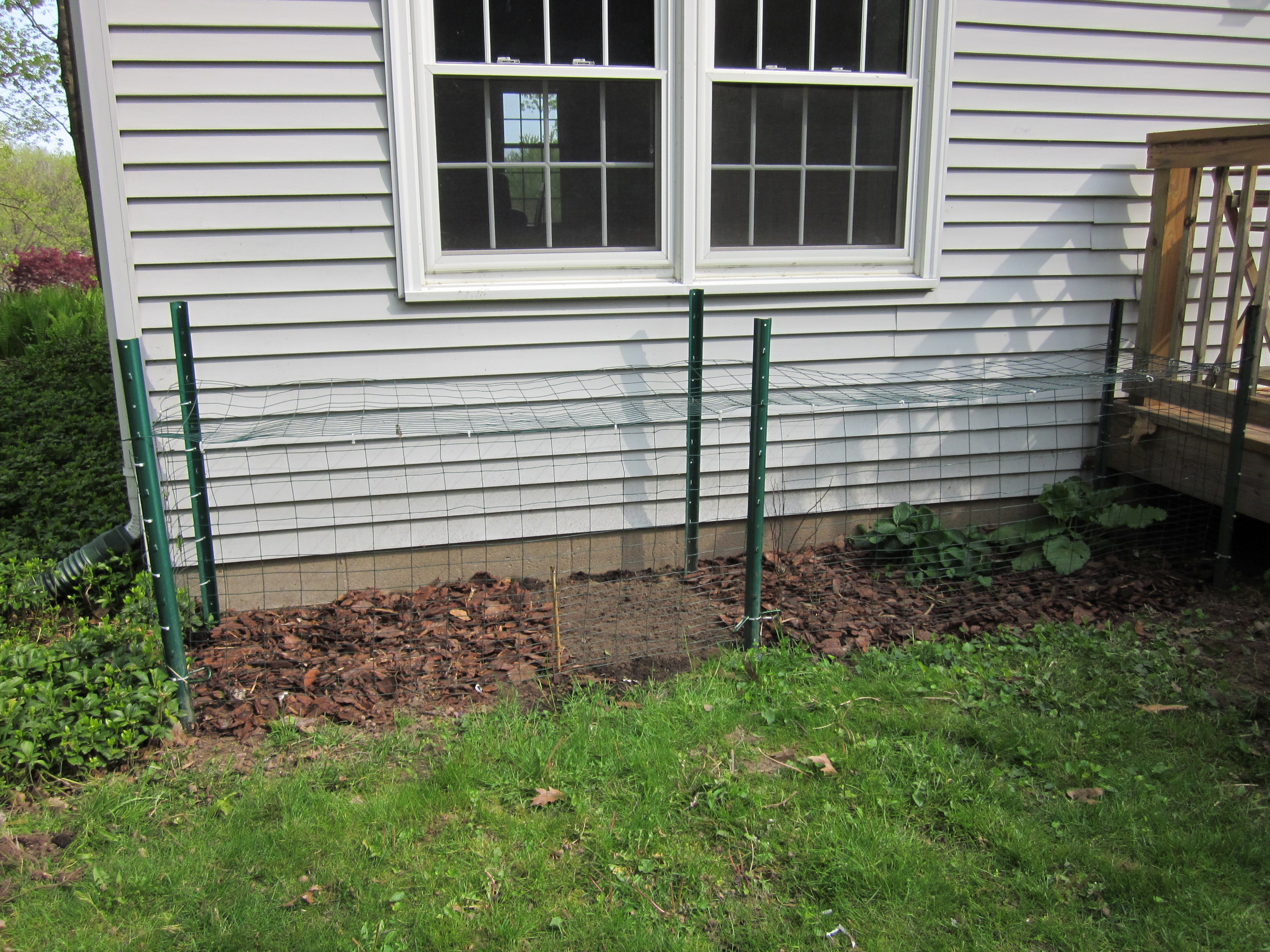 deerproof vegetable garden
